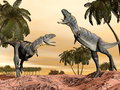 Acasaurus dinosaurs fight d render two fighting in desert with palm trees Royalty Free Stock Image