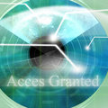 Access granted Royalty Free Stock Image