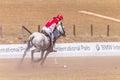 Acción de polo riders girl horse play Fotografía de archivo libre de regalías