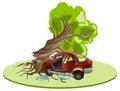 Accident car crash ran into tree. Vehicle insurance Royalty Free Stock Photo
