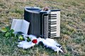 Accordion of angels an old with a red rose a book and angel wings on a meadow Stock Image