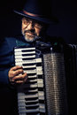 Accordion Player Portrait Royalty Free Stock Photo