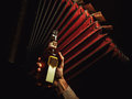 Accordion With Serbian Money and Bottle of Drink. Royalty Free Stock Photo