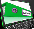 Accounts file on laptop shows accounting and financial Royalty Free Stock Images