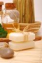 Acessórios dos TERMAS para o wellness ou o relaxamento Imagens de Stock