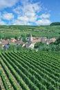 Achkarren,Kaiserstuhl wine region,Black Forest,Germany Royalty Free Stock Photo
