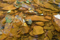 Acid Mine Drainage. Royalty Free Stock Photo