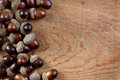 Acorns on a wooden background Stock Photos
