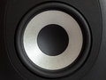 Acoustic bass loudspeaker, stereo speaker close up. Royalty Free Stock Photo