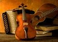 Acoustic musical instruments guitar ukulele violin