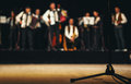 Acoustic Orchestra on Stage Royalty Free Stock Photo