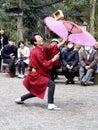 image photo : Acrobatic performer