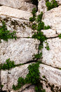 Acropolis bricks plants growing between at the in athens greece Royalty Free Stock Image