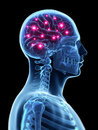 Active brain d rendered illustration Stock Photos