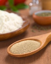 Active dry yeast basic ingredients of a pizza on wooden spoon with oregano flour salt pepper tomato and basil in the back Stock Images