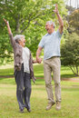 Active senior couple holding hands and jumping in park full length of the Stock Photos