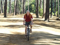 Active senior man cycling through woodland smiling front view portrait Stock Photos