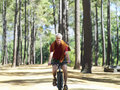 Active senior man cycling through woodland smiling front view portrait Royalty Free Stock Image