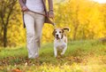 Active senior woman walks dog in nature Royalty Free Stock Photo