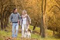 Active seniors walking dog in nature Stock Photos