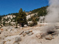 Active volcanic area in mountain valley bumpass hell a at lassen national park california Royalty Free Stock Images