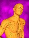 Acupuncture model M-POSE FBHM-405-8, 3D Model