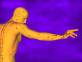 Acupuncture model M-POSE Ma-s-12-3, 3D Model