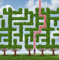 Adapt to change and finding creative solutions to difficult growing challenges as a group of trees as a maze or labyrinth and a Stock Photos