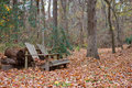 Adirondack Bench Stock Images