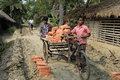 Adolescent labour carrying bricks on the cycle van at the rural india Royalty Free Stock Image