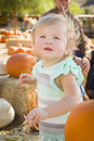 Adorable baby girl having fun at the pumpkin patch in a rustic ranch setting Royalty Free Stock Photos