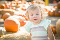 Adorable baby girl having fun at the pumpkin patch in a rustic ranch setting Royalty Free Stock Photo