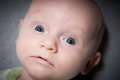 Adorable Baby With Large Blue Eyes Royalty Free Stock Photo
