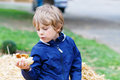 Adorable blond kid boy eating hot dog outdoors Royalty Free Stock Photo