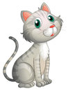 An adorable cat illustration of on a white background Royalty Free Stock Photo