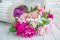 Adorable cute sweet baby girl in white basket with flowers on wooden floor Royalty Free Stock Photo