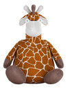 Adorable fat stuffed giraffe Royalty Free Stock Image