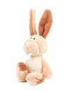 Adorable generic stuffed bunny isolated on a white background Royalty Free Stock Image