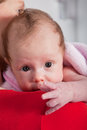Adorable inquisitive little baby girl peering over the top of her mothers shoulder at the camera with big wide trusting eyes Royalty Free Stock Image
