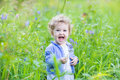 Adorable laughing baby girl playing with blue flowers in garden a Royalty Free Stock Photo
