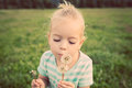 Adorable little blond girl with dandelion flower happy kid having fun outdoors Stock Images