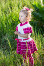 Adorable little child girl on grass on meadow. Summer green nature background Royalty Free Stock Photo