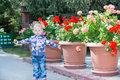 Adorable little child girl in park near flower Bed in summer day Royalty Free Stock Photo