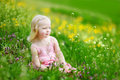 Adorable little girl in blooming meadow Royalty Free Stock Photo