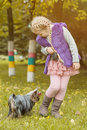 Adorable little girl playing with her puppy image of in park Stock Photography