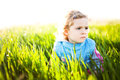 Adorable little girl taken closeup outdoors in summer Stock Images
