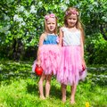 Adorable little girls have fun in blossoming apple Royalty Free Stock Photo