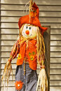 Adorable scarecrow with a cute hate and straw Stock Images
