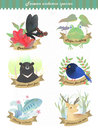 Adorable taiwan endemic species collection in fantastic style Royalty Free Stock Images