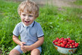 Adorable toddler with bowl strawberries Royalty Free Stock Image